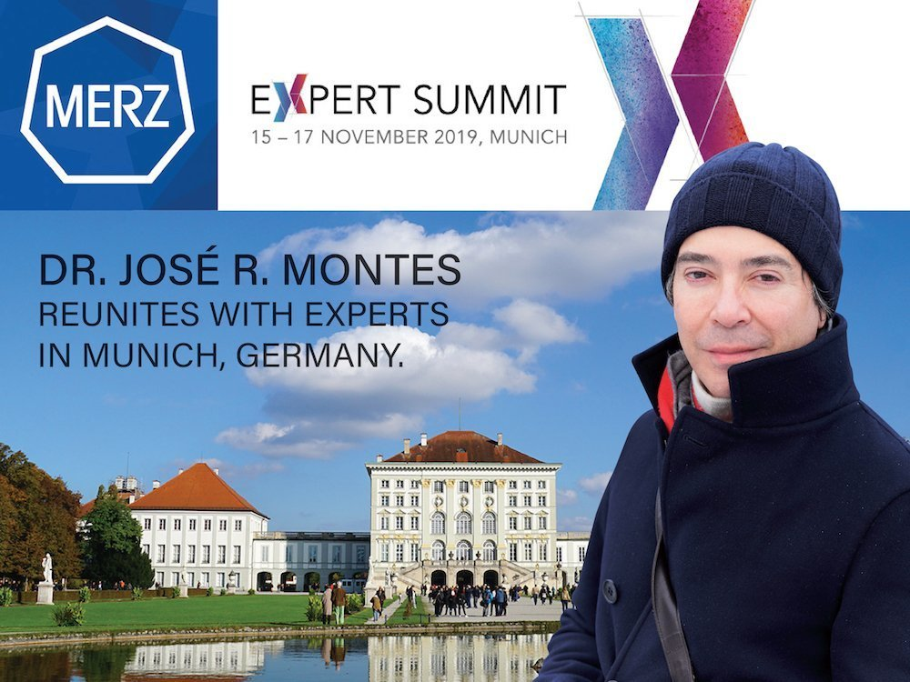 merz expert summit 2019
